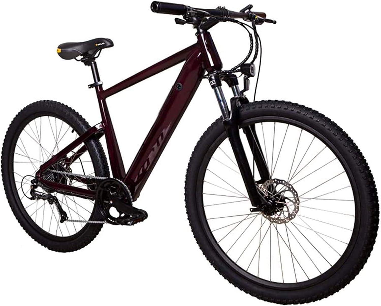 Bicicleta eléctrica de nieve, E-bici de montaña Ocultos bicicletas de montaña batería eléctrica con doble suspensión de velocidad variable bicicleta eléctrica Light Adult bicicleta de pedales 36v 250w
