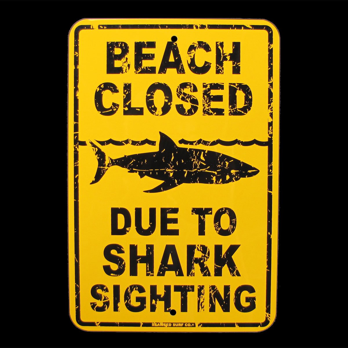 Beach Closed Due to Shark Sighting Sign by SW