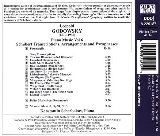 Piano Music 6: Schubert Transcriptions