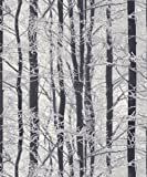 Arthouse Frosted Forest Wallpaper Silver 670200 Full Roll
