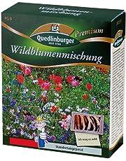 Quedlinburger Wildblumenmischung (ohne Gräser)