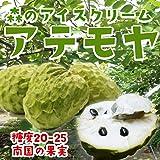 沖縄フルーツ アテモヤ 約1kg 沖縄県恩納村産 森のアイスクリーム