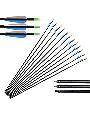 """Huntingdoor 12 x 31"""" Frecce in Fibra di Vetro Frecce per bersagli / Caccia Frecce Punte Sostituibile a Vite Target Practice per Ricurvo e Arco Compound ad Alta Resistenza e Durevole Raccomandazione Speciale 3 Colori Disponibili"""