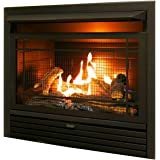 Amazoncom Natural Gas Vent Free Fireplace Insert With Millivolt