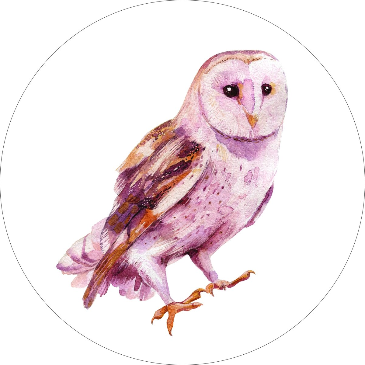 Owl Home Wall Shelf Decor Animal Decorations Watercolor Round Sign - 18 Inch, Metal