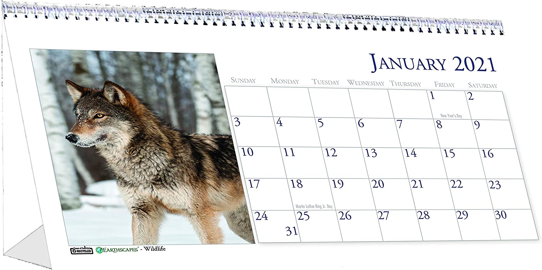 House of Doolittle 2021 Monthly Desktop Tent Calendar, Wildlife, 8.5 x 4.5 Inches, January - December (HOD3689-21)
