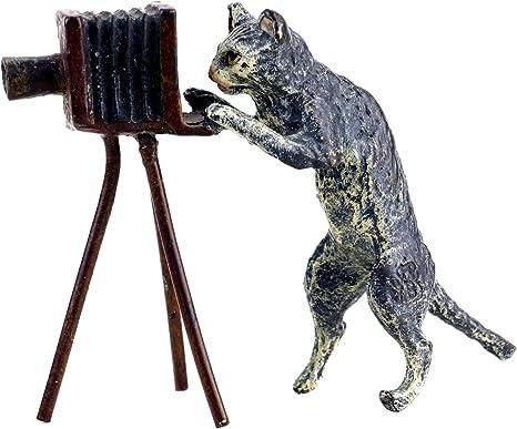 Viena Bronce – gato con cámara – con sello – pintado a mano – Escultura Estatua de gato, diseño de gato para venta – Wiener bronce: Amazon.es: Hogar
