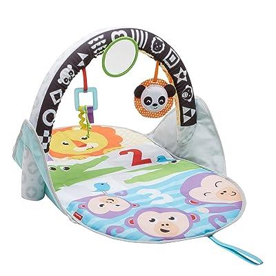 Fisher-Price 2-in-1 Flip & Fun Activity Gym : Baby