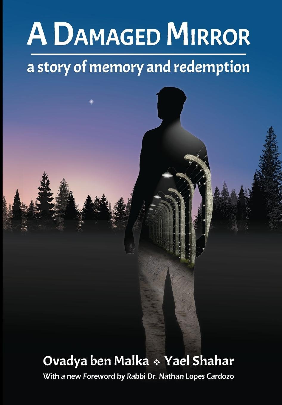 Download A Damaged Mirror: A story of memory and redemption PDF