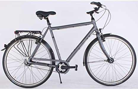 gudereit Fantasy Classic hombre City bicicleta 28 pulgadas 8 ...