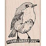 Hero Arts Bird Woodblock Stamp