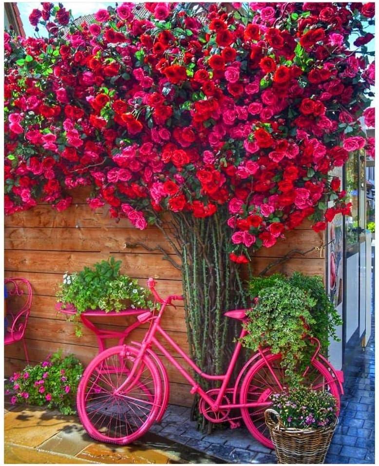 yhsndy pintar por numeros adultos Flor roja y bicicleta Cuadros de arte Pintura al óleo DIY por números Pintado a mano para principiantes Adulto Decoración Artesanías Con marco 40X50cm