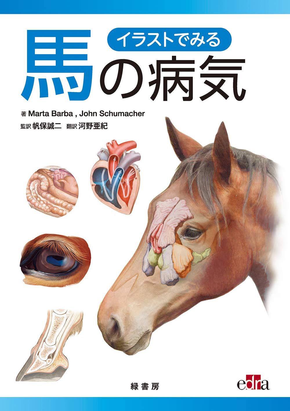 イラストでみる馬の病気 帆保 誠二 帆保 誠二 河野 亜紀 本 通販 Amazon