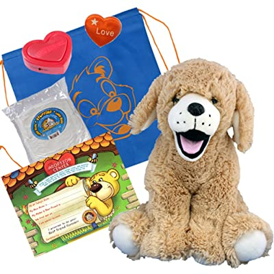 "Golden Labrador (16"" Plush) w/Heart Shaped Voice Recorder (No-Sew DIY Build-a-Plush Kit): Toys & Games"