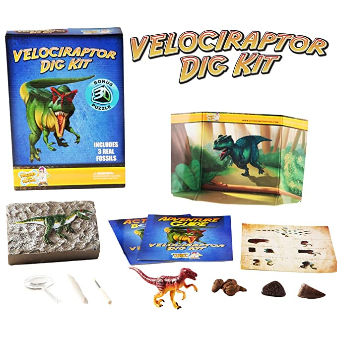 Discover with Dr. Cool Velociraptor Dinosaur Dig Kit - Excavate 3 Fosiles Real Dino!: Amazon.es: Juguetes y juegos