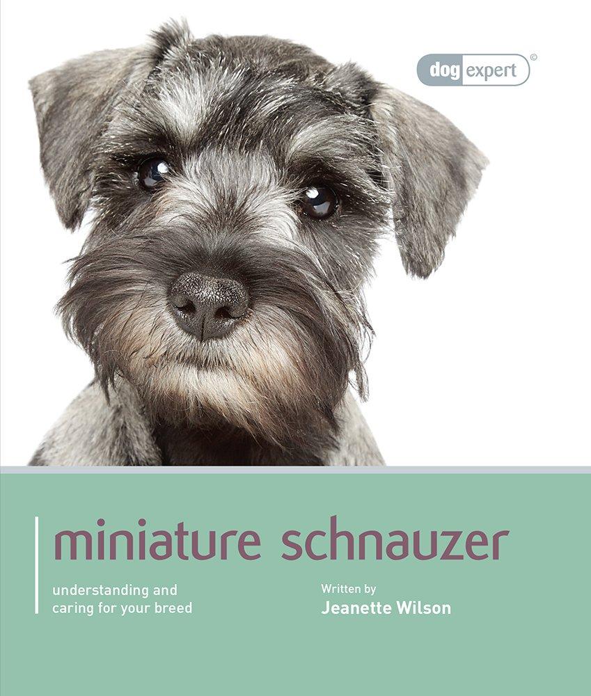 Miniature-Schnauzer-Dog-Expert