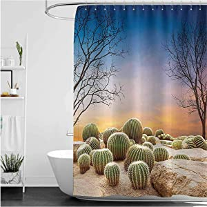 """Interestlee Cactus Fabric Shower Curtain, Cactus Balls with Spikes on a Montain Desert Sand Hot Dry Mexican Landscape Photo Waterproof Summer Bath Decor, Multicolor, 66"""" x 72"""""""