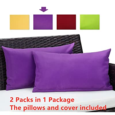 GREARDEN Set of 2 Waterproof Outdoor Patio Square Pillows, Rectangle PU Coating Throw Pillow for Tent Park Couch Throw Pillows Home Garden Indoor Outdoor Decorative (12X20, Purple): Home & Kitchen