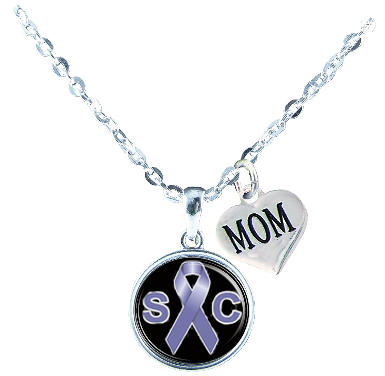 Holly Road Necklace Custom Stomach Cancer Awareness Silver Chain Choose MOM OR DAD only Jewelry