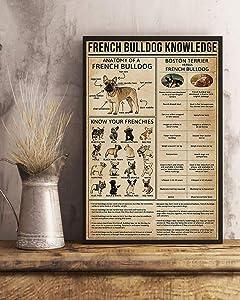HolyShirts French Bulldog Knowledge Anatomy of a French Bulldog Poster (16 inches x 24 inches)