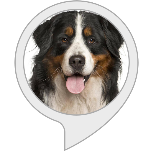 Used, Relax My Dog for sale  Delivered anywhere in USA