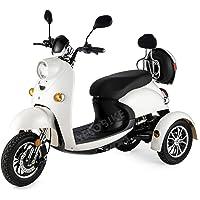 Stijlvolle elektrische mobiliteit driewieler E-scooter elektrische scooter mobiliteit scooter 500 W tot 35 km/u