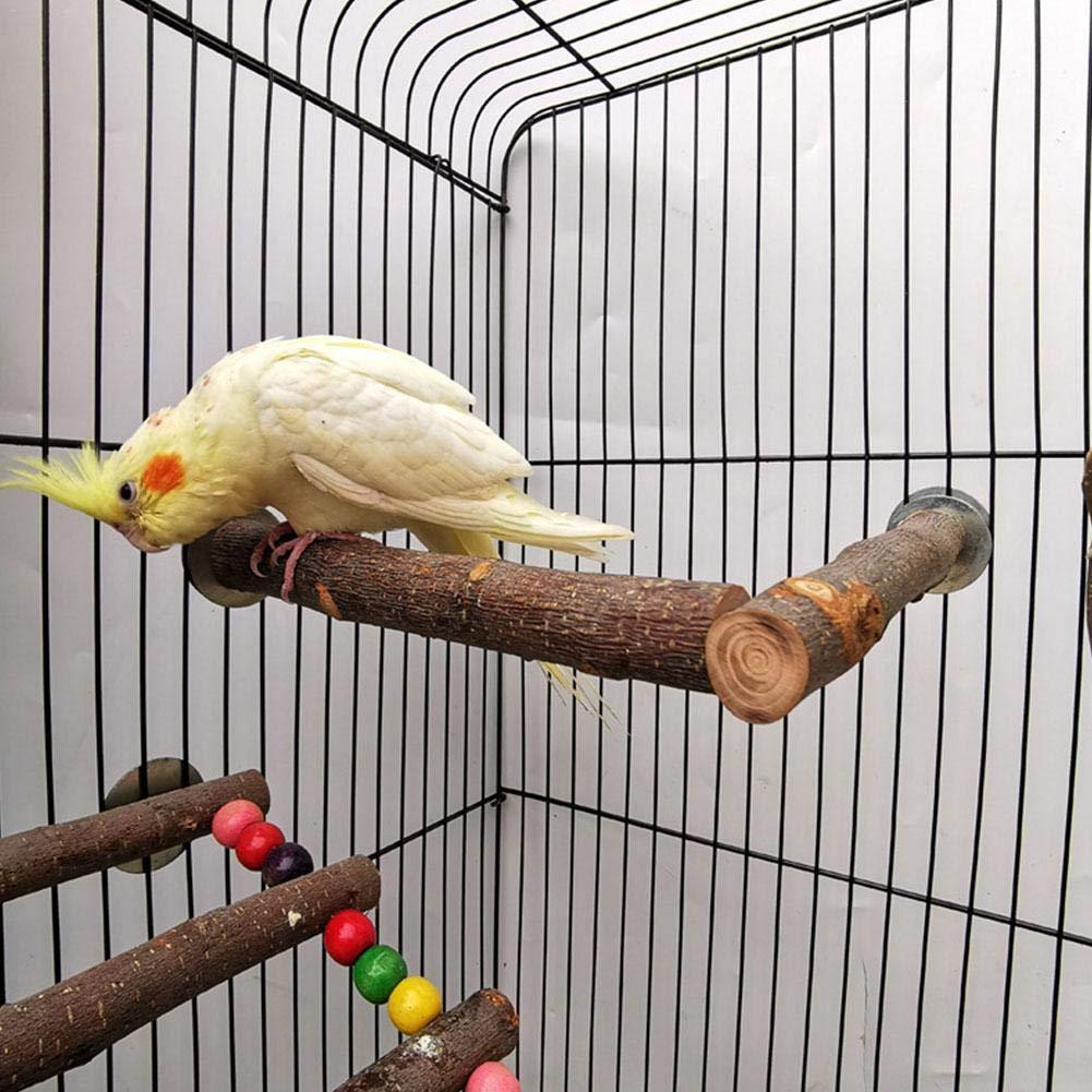 Sunnyushine Soporte de Madera para pájaros Perca Palillo de UVA ...