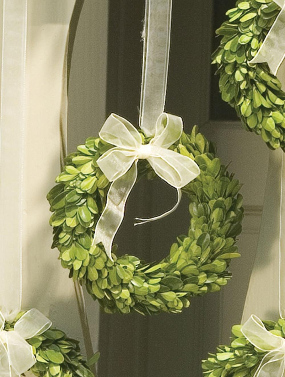 Napa Home & Garden 6-inch Preserved Boxwood Wreath with Ribbon 7509SPG