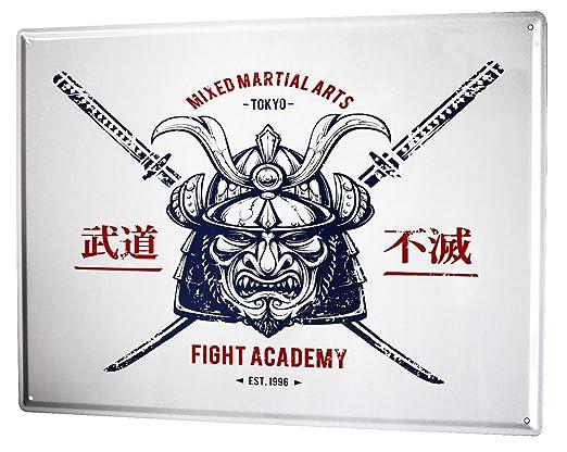 Cartel Letrero de Chapa Retro Nostalgia Asia Samurai: Amazon ...
