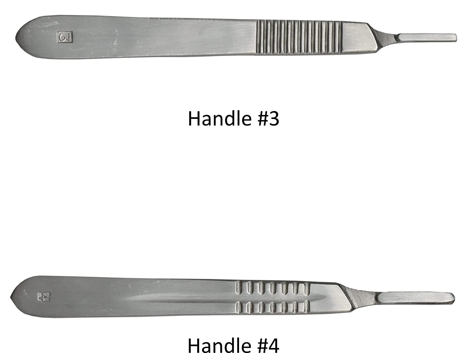 Amazon.com: Dissection Kit - Premium quality Stainless Steel Tools ...