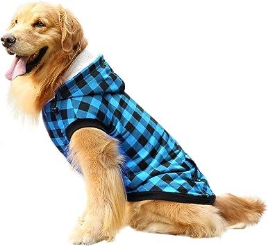 Amazon.com: Asenku - Chaqueta con capucha para perro, de ...