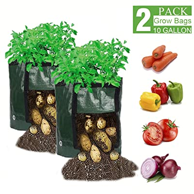 WGCC 10 Gallon Potato Grow Bags, 【2 Pack】 Plant Grow Bags with Flap and Handles Heavy Duty Thickened PE Garden Growing Bags Vegetable Planter for Potato Carrot Onion Taro Radish Peanut : Garden & Outdoor