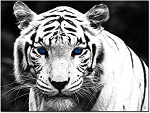 Nachic Wall - Tiger Canvas Wall Art for Living Room White Tiger with Blue Eyes Picture Print on Canvas Wild Animal Painting Giclee Artwork Gallery Wrapped Ready to Hang 24x32inches
