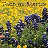 Texas Wildflowers 2019 12 x 12 Inch Monthly Square Wall Calendar, USA United States of America Southwest State Nature (Multilingual Edition)