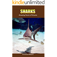 Sharks: Amazing Facts & Pictures