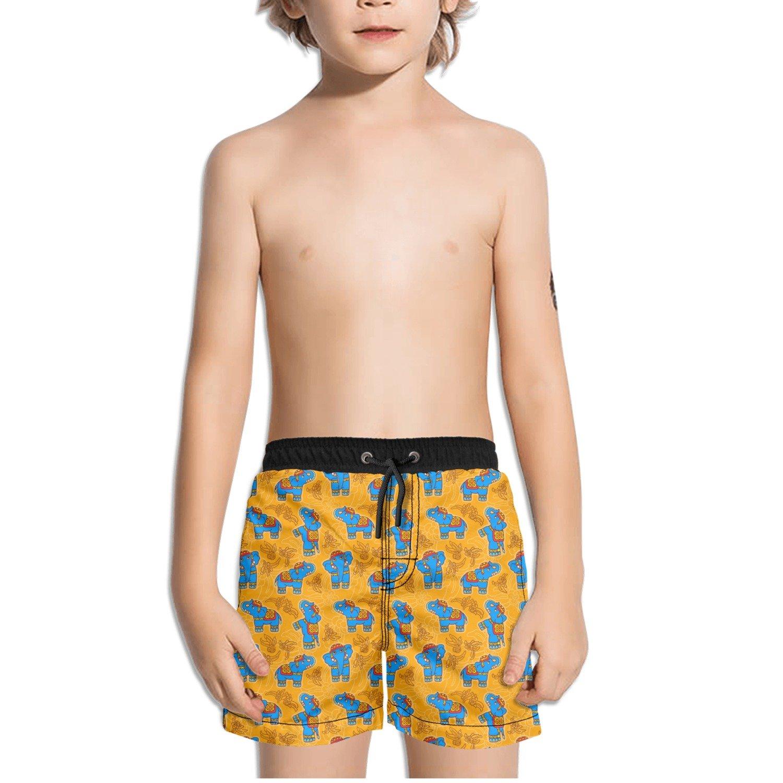 Trum Namii Boys Quick Dry Swim Trunks Tribal Elephant Art Golden Shorts