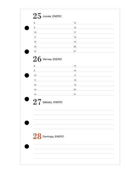 Amazon.com : Miquelrius 35341 - Agenda Yearly Week View ...