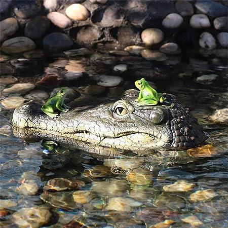 SuoYn Ornamentos del Jardín Flotando Cabeza del cocodrilo de Agua de Estanque de jardín Decoy Arte Decoración for el Ganso Predator Garza Pato de Control Inicio la Decoración del Jardín /: Amazon.es: