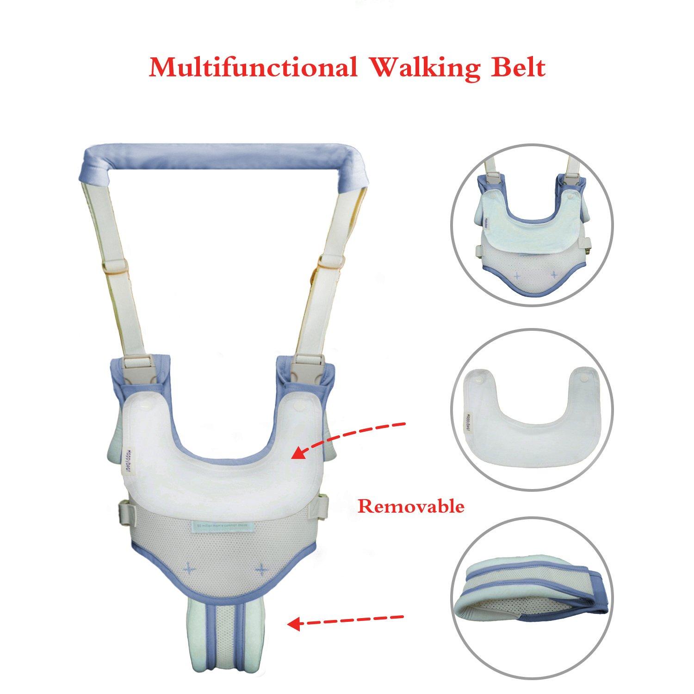 Amazon.com: Caminar Correa ayudante, seguro, transpirable ...