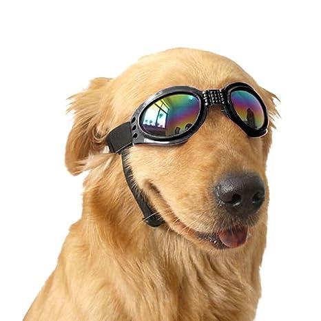 749e227e5b1ab Angker Lunettes de lunettes de chien