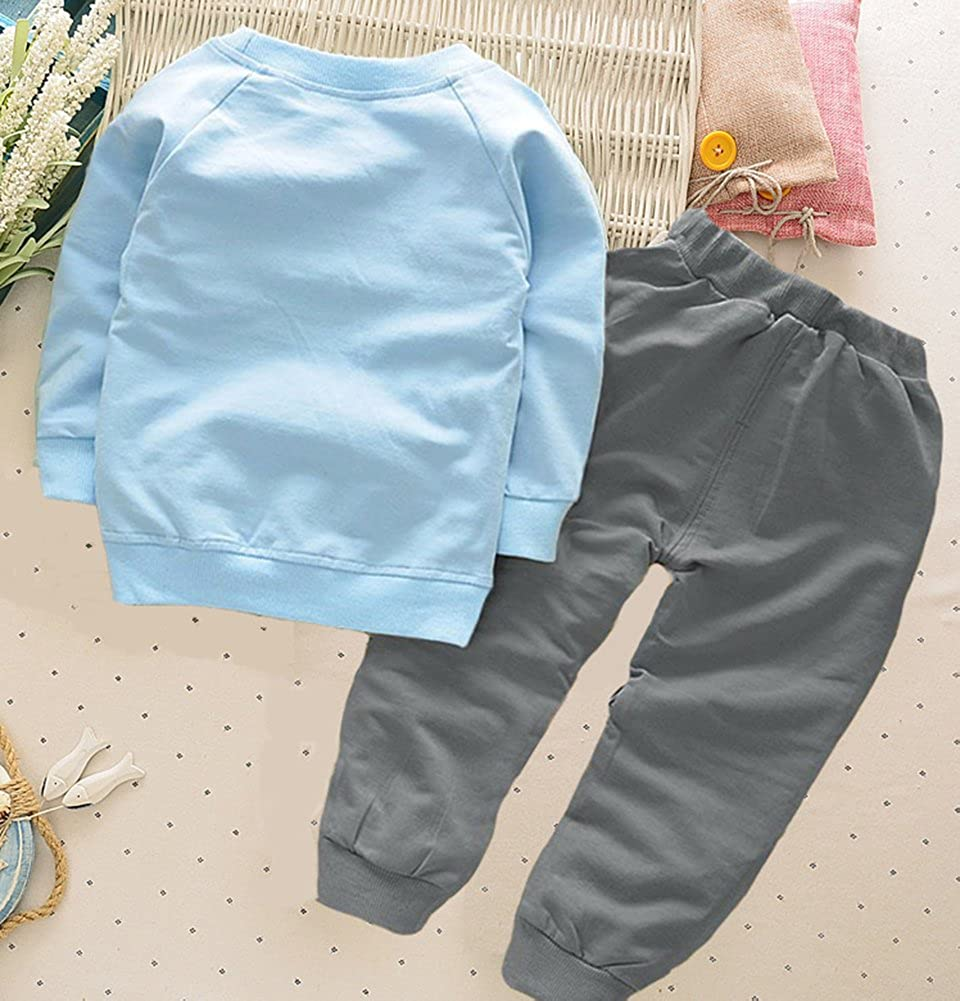 BomDeals Cute Cat Elephant Print Toddler Baby Girls Clothes Set,Long Sleeve T-Shirt Pants Outfit