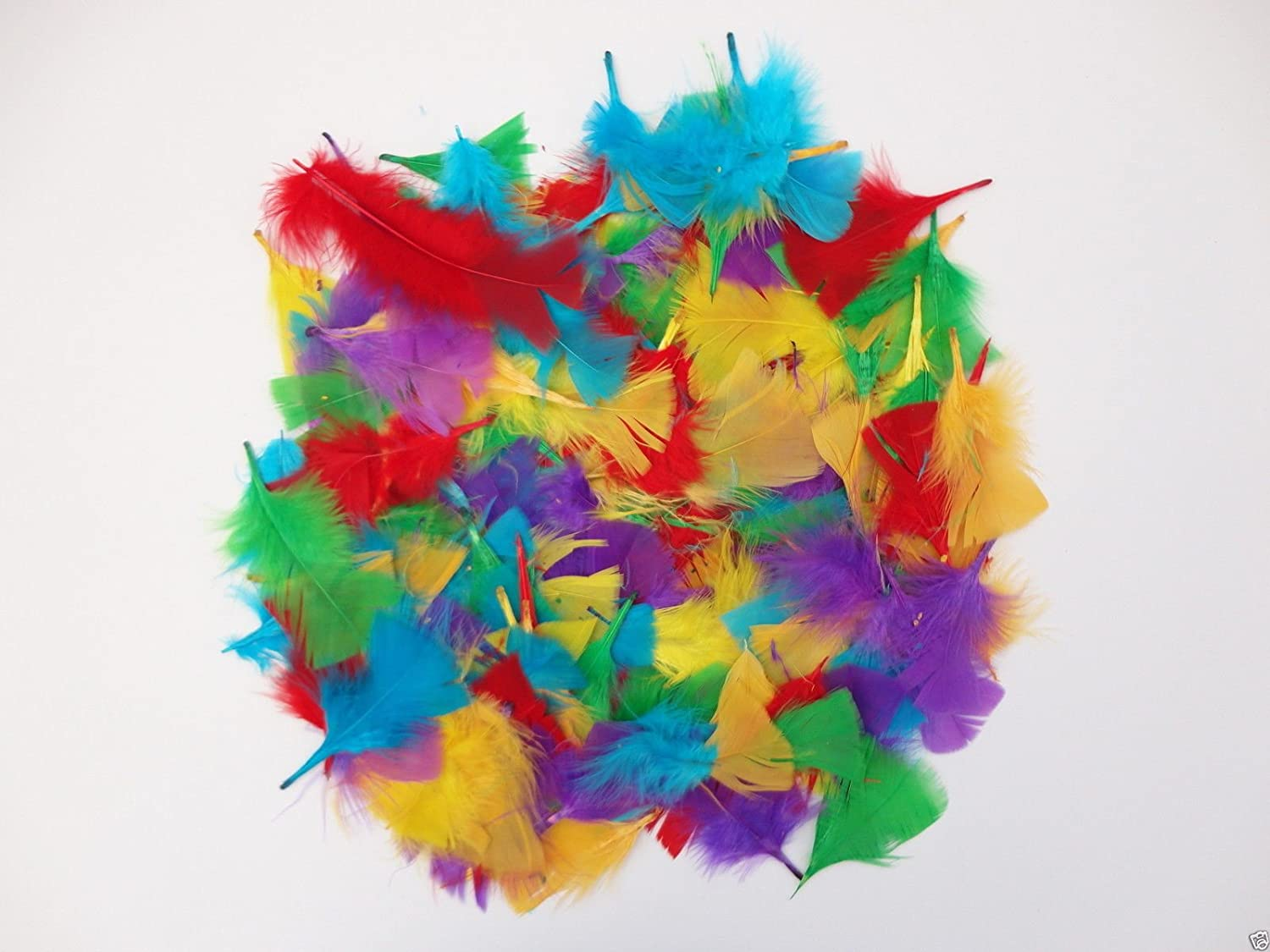250+ Assorted Coloured Feathers Art Craft Collage Hats Costume Millinery a2bsales