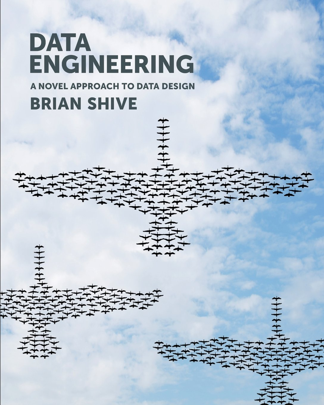 Download Data Engineering ebook