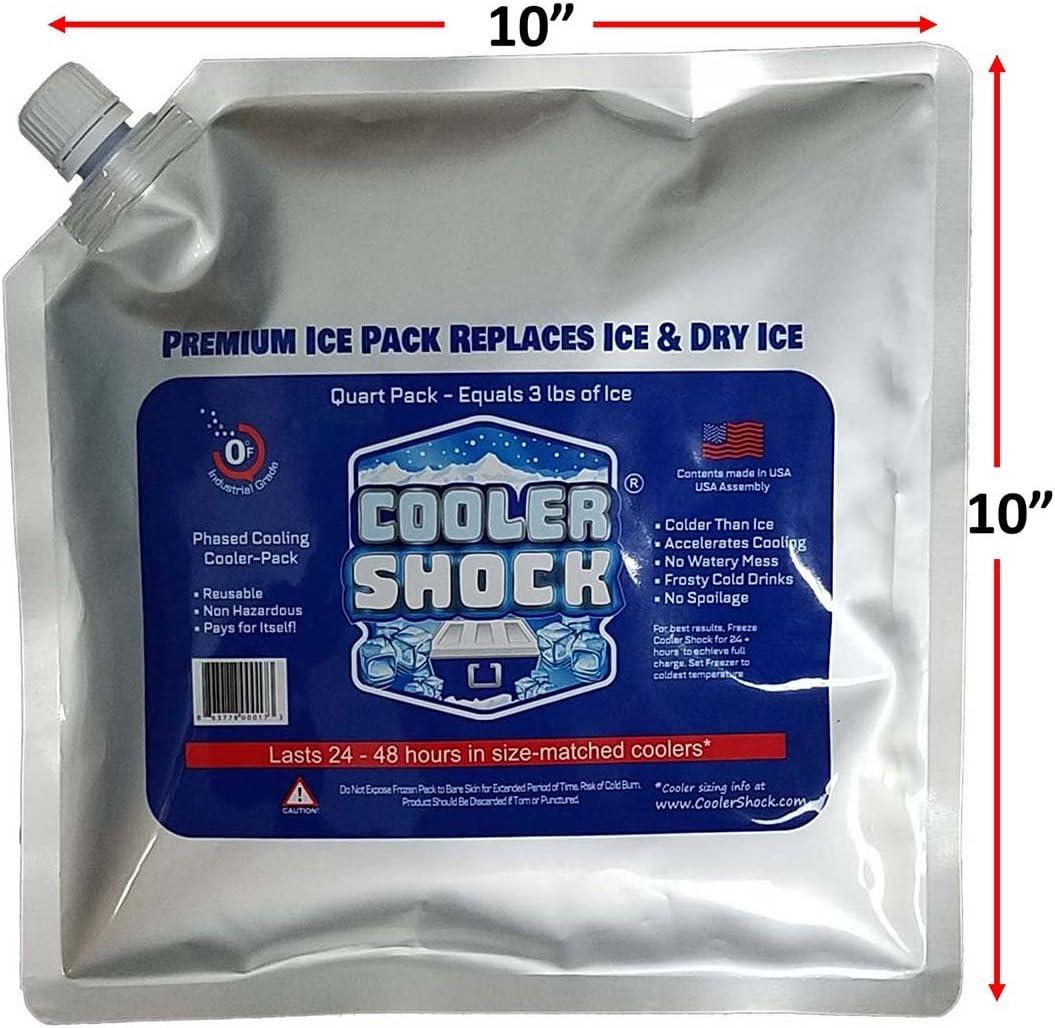 Cooler Shock 4 Paquetes de Bolsas de Hielo para Caja Enfriadora ...