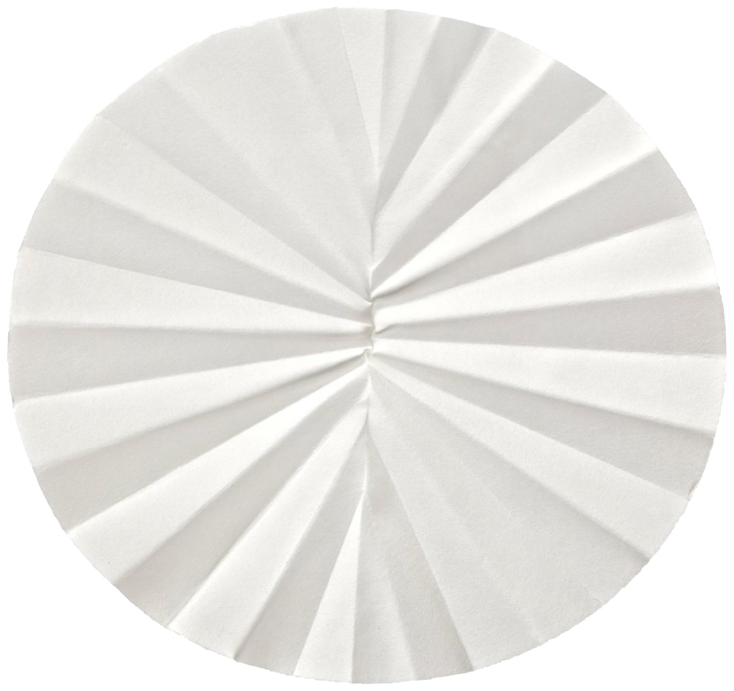 Ahlstrom 5130-1250 Pleated Filter Paper, 6 Micron, Rapid Flow, Grade 513, 12.5cm Diameter (Pack of 100)