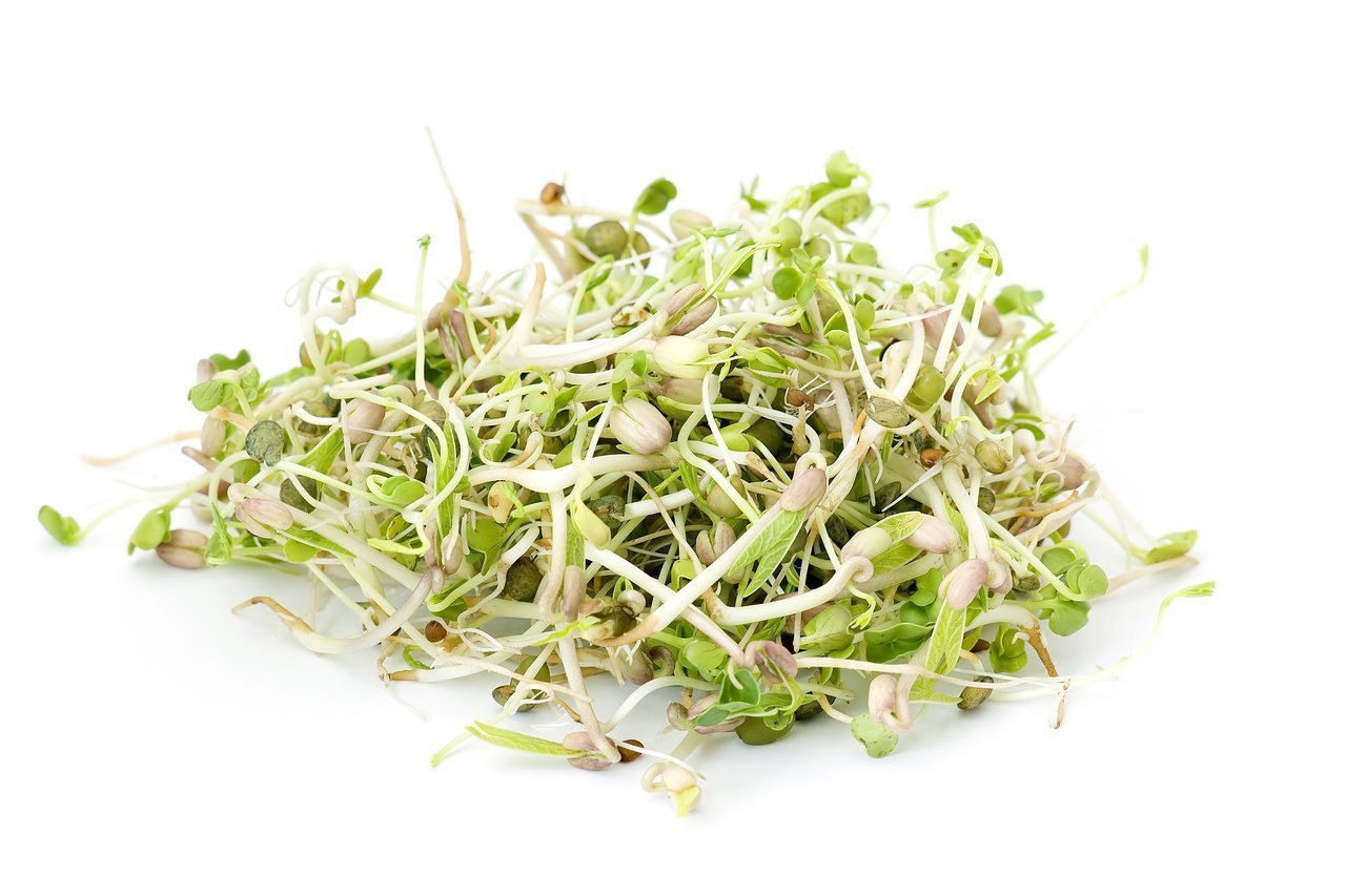 Organic Sprouting Seed Mix: Clover, Arugula, Cress, Radish, Dill (1 Lb) by Dirt Goddess Super Seeds