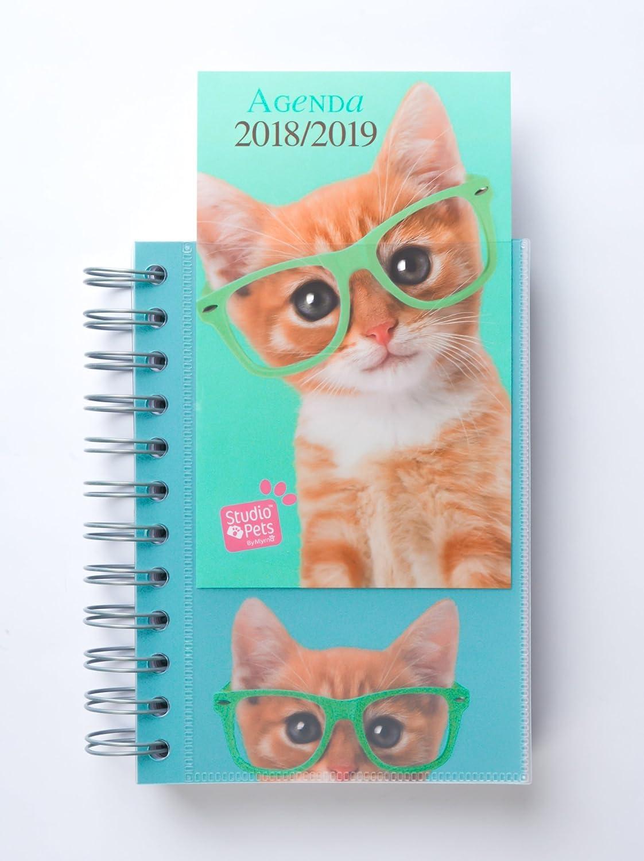 Grupo Erik Editores Studio Pets - Agenda escolar en francés con diseño gato, 11.4 x 16 cm