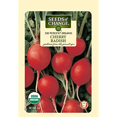 Seeds of Change Certified Organic Cherry Belle Radish : Vegetable Plants : Garden & Outdoor