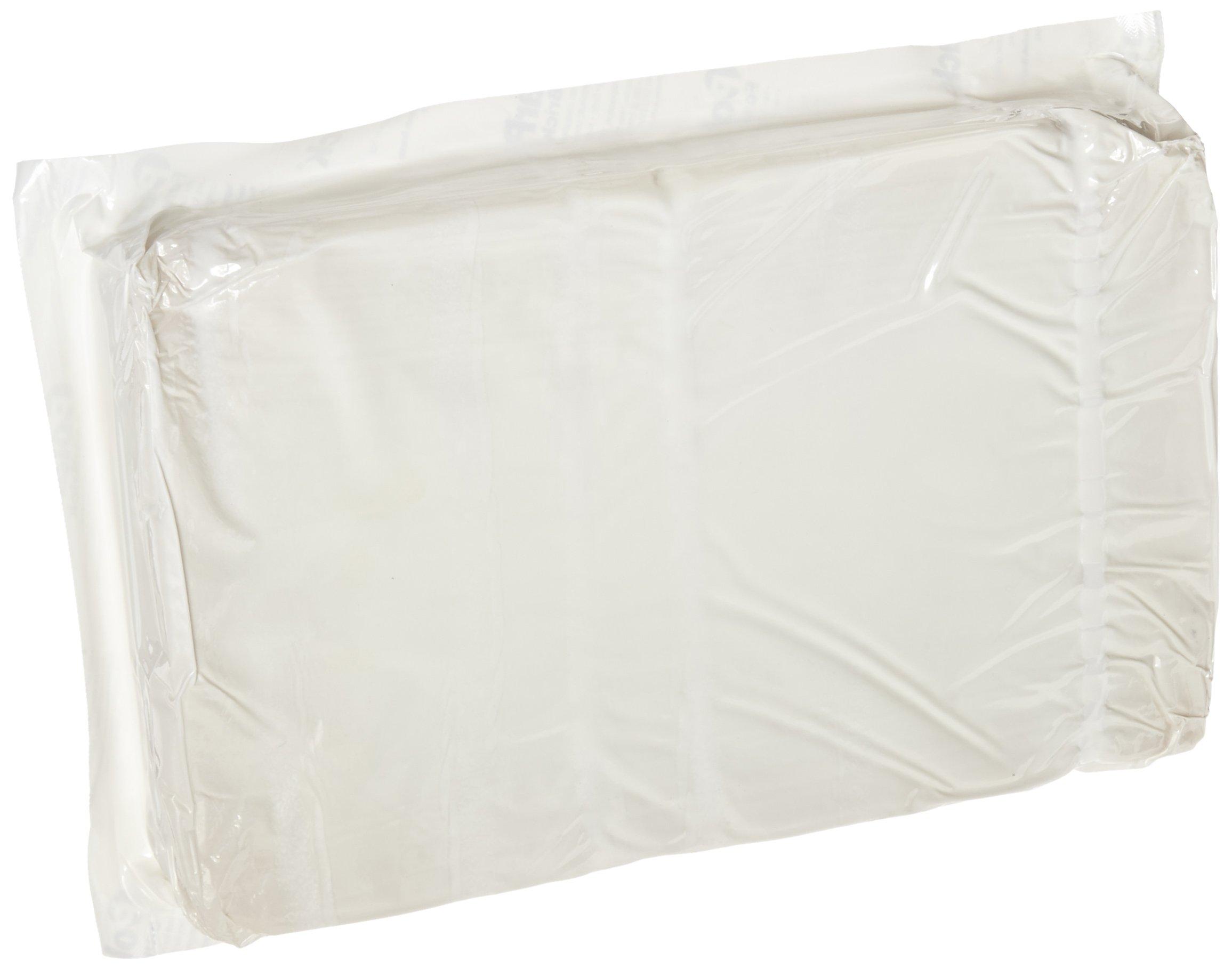 ThermoSafe Polar Pack FPP64 Foam Brick Refrigerant Gel Pack, 0°C Temperature, 10.5'' L x 6.5'' W x 1.75'' H (Case of 10)
