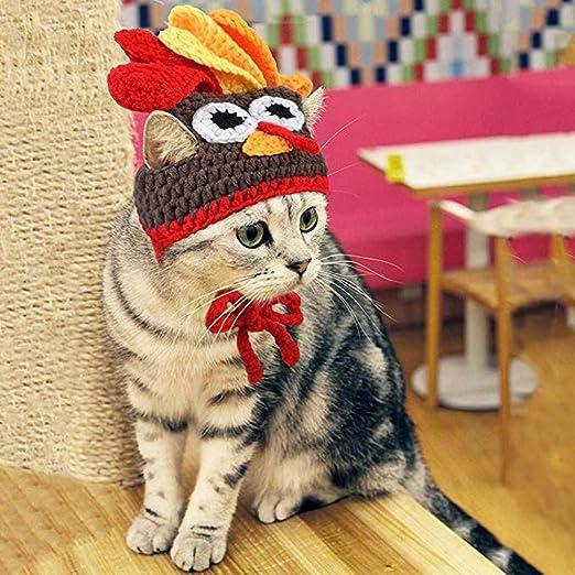 Factorys Disfraz de Gato Mascota Sombrero de Pavo Ropa de acción de Gracias Navidad Mascota Perro Perro Gato Decoración Cap: Amazon.es: Productos para mascotas